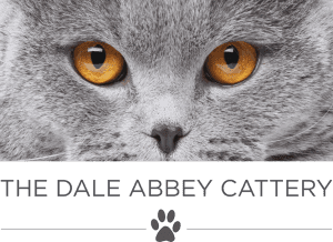 dale abbey cattery
